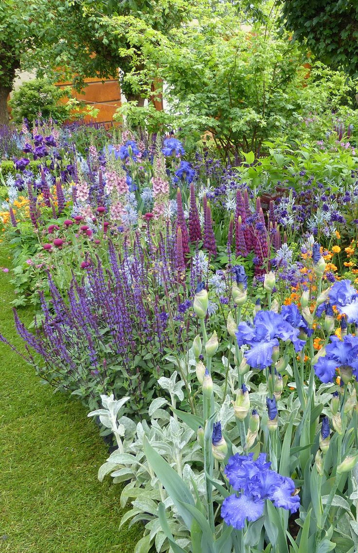 Garden style the english cottage garden where the old - Fantastic Planting In The Healthy Cities Garden Mix Of Purple Blue Pink And