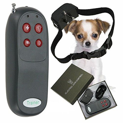 4 In 1 Remote Small/Med Dog Training Shock Vibrate Collar Trainer Safe For Pet * Click image for more details. (This is an affiliate link and I receive a commission for the sales)