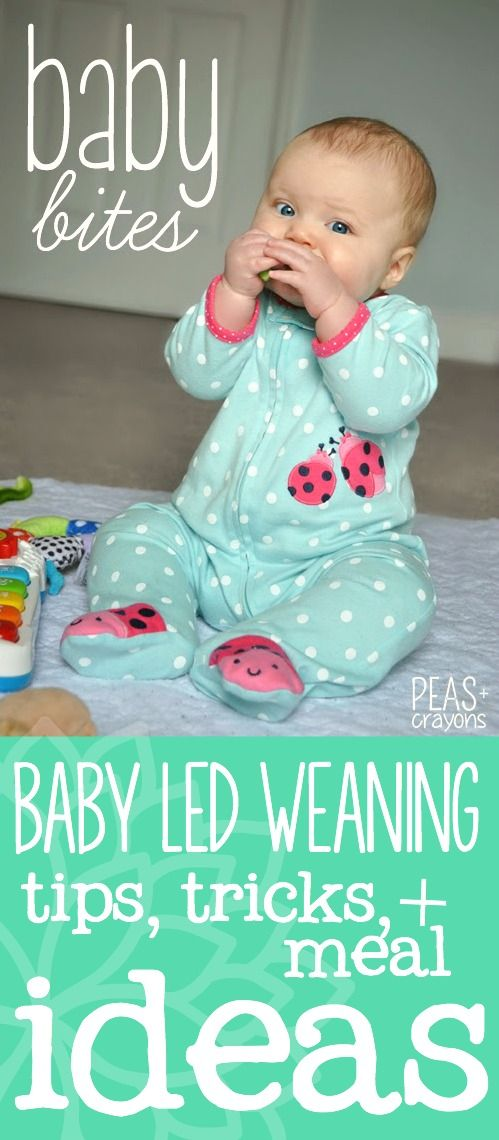 Baby Bites II : Adventures in Baby Led Weaning : Recipes, tips and tricks from our kitchen to yours!