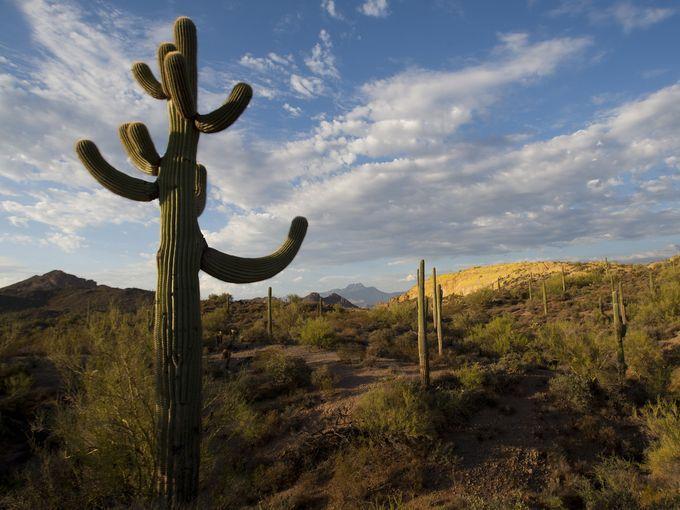 Scenic wonders and outdoor activities within 2 hours of Phoenix