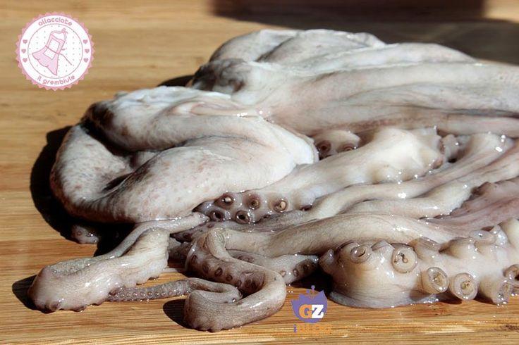 volete sapere come cuocere il polpo?direttamente dal mio pescivendolo...niente più tappi di sughero, congelamento in freezer o immersione in acqua bollente.