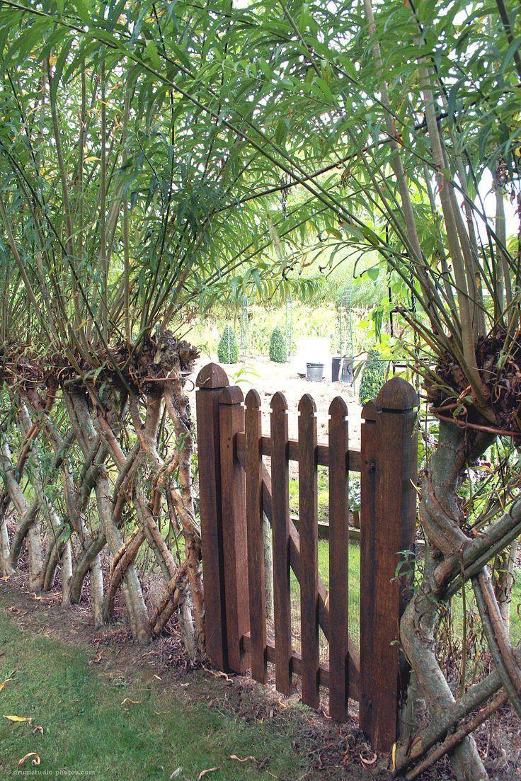 Lebender Zaun Gartentor In Einem Gewebten Weidenzaun Ein