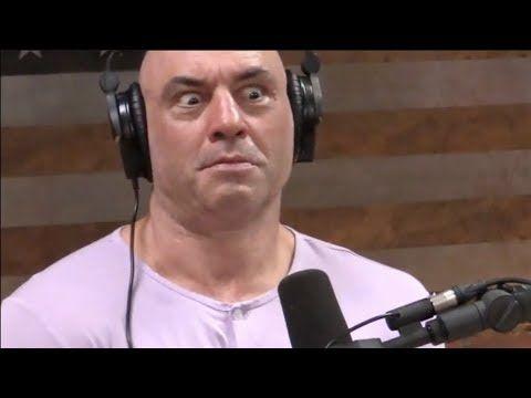 Forrest Galante's Shaman Drug Story | Joe Rogan - YouTube