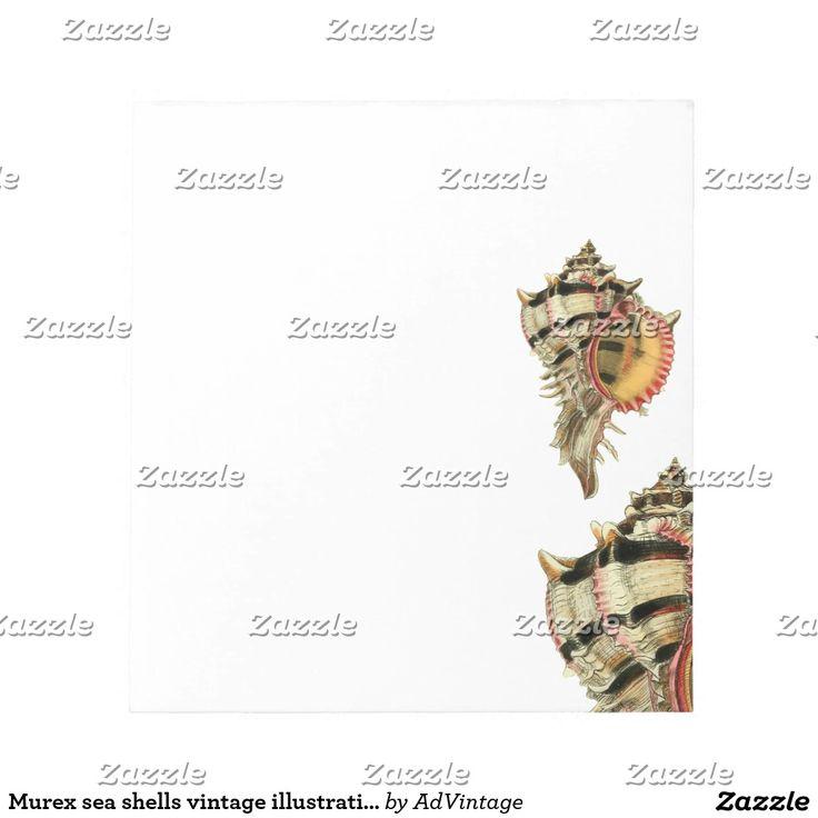 Murex sea shells vintage illustration note pad