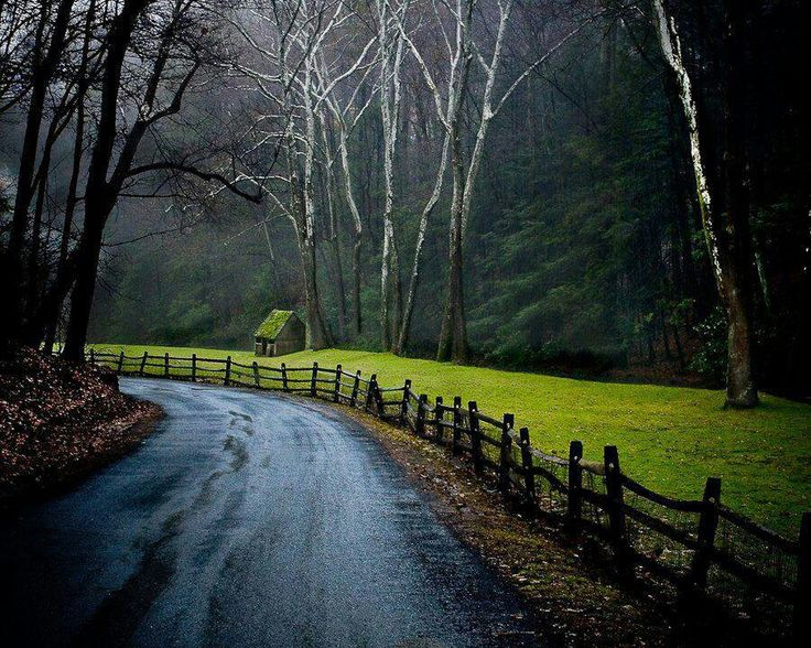 New Hope Pennsylvania Places To Visit Pinterest Forests Pennsylvania And Hope