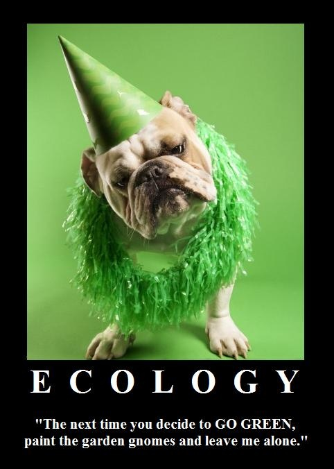 Ecology Happy Birthday Dog Birthday Qoutes Birthday Wishes