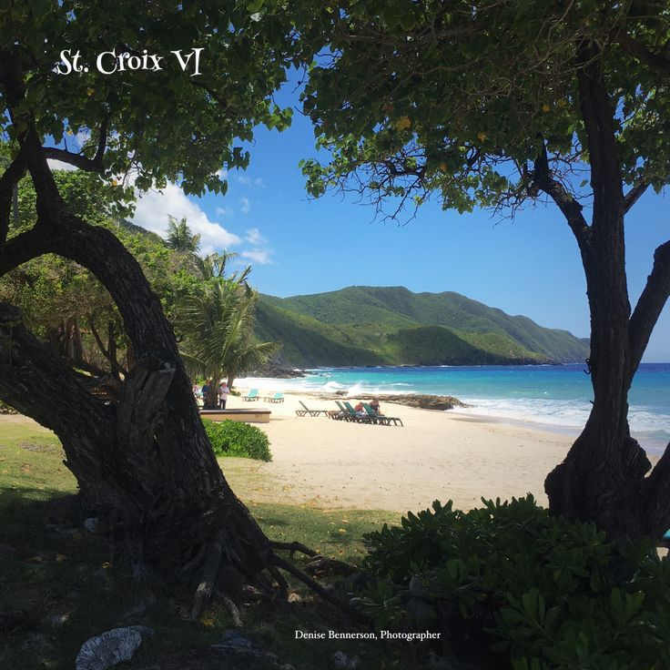 Great view of the beach and hillsides in St. Croix VI.  #VirginIslands #StCroixVI #USVI #VINice #CaribbeanBeaches #WeddingVenue #Carambola #DeniseBennersonPhotography #Weddings