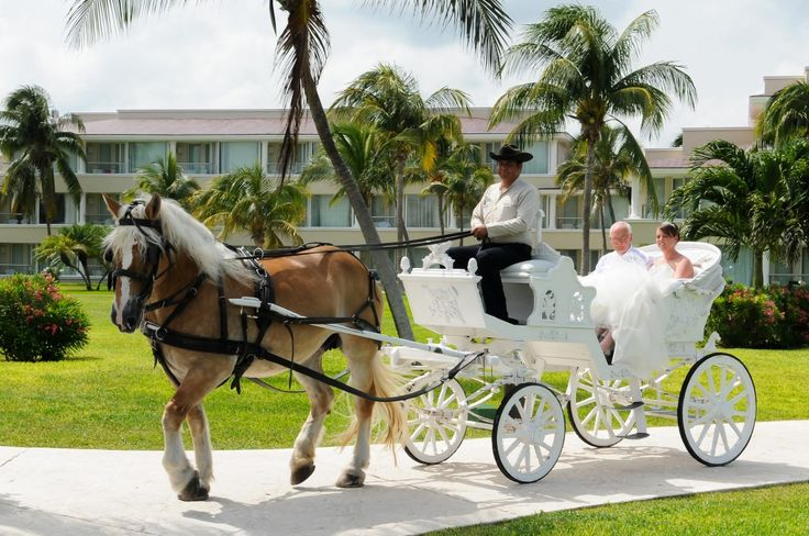 Feel like like a princess when you arrive to your ceremony with horse and Carriage! Photography Courtesy of Moon Palace.