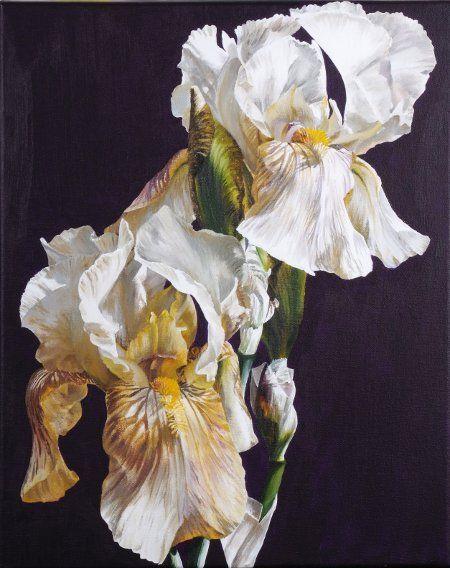 15 best Irises images on Pinterest | Flower paintings, Irise and Irises