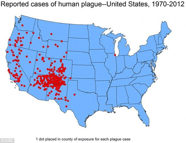 The vast majority of human plague cases reported in the US are in the arid climate of the Southwest, which scientists say is similar to the disease's homeland of Central Asia