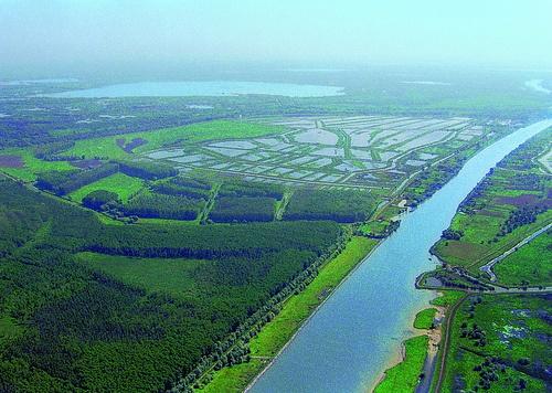 Delta Dunarii - Danube Delta , Romania