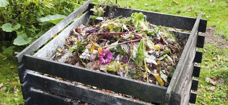 Guide pratique sur le compost comment faire et utiliser