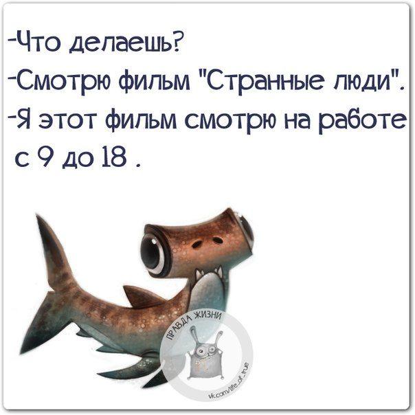 Позитивные фразочки в картинках (25 фразок) » RadioNetPlus.ru развлекательный портал