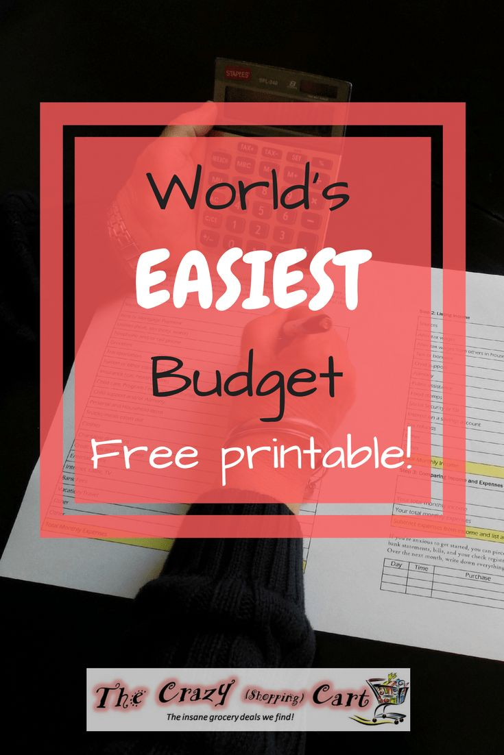 New to setting up a budget? Overwhelmed by all of the different budget programs available? Here is the simplest budget that still fits any lifestyle, and even works for kids!  Budgeting your money with this easy budget will help you have a frugal and thrifty lifestyle.  World's Easiest Budget + FREE Printable! | The Crazy Shopping Cart