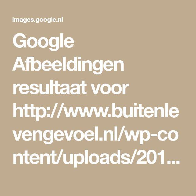 Google Afbeeldingen resultaat voor http://www.buitenlevengevoel.nl/wp-content/uploads/2016/10/Bladvanger.jpg