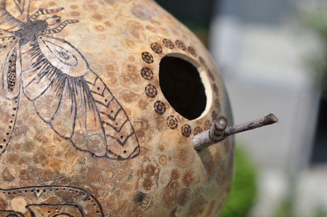 kalabasa, Bottle Gourd, bird house