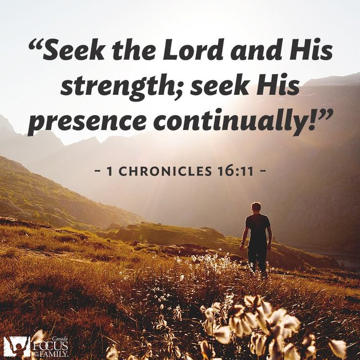 Seek the Lord and His strength. 1 Chronicles 16:11