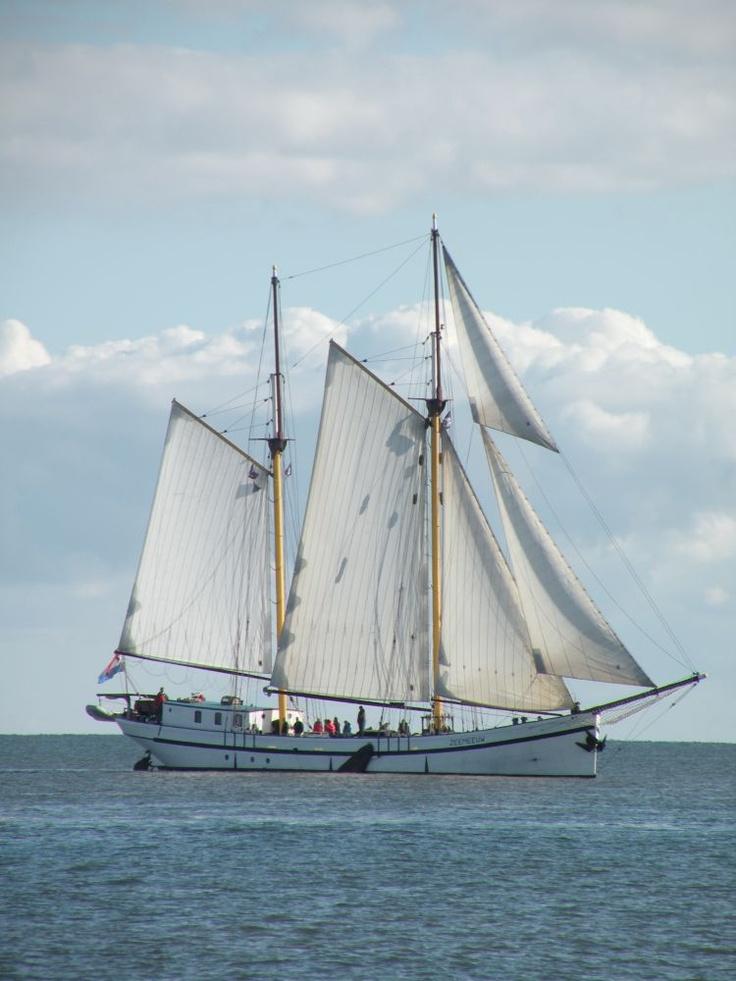 #Zeilcharterschip 'Zeemeeuw'.