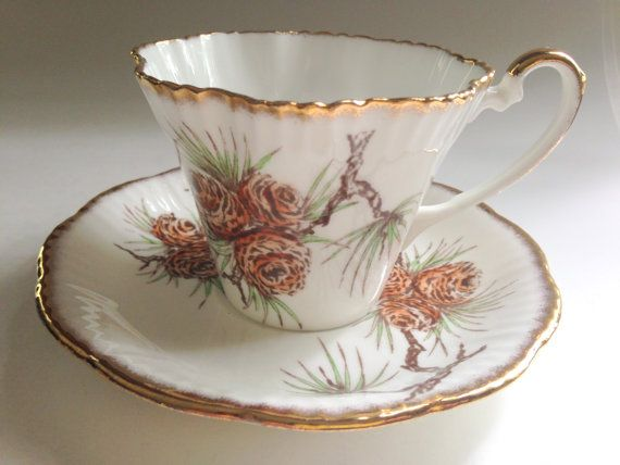 Salisbury Tea Cup and Saucer, English Teacups, Pine Cones Cups, English Tea Set, Tea Sets, Bone China Cup, Cup Antiques, Teacups Antique