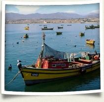 IFSA-Butler has beginner and advanced Spanish language study in Santiago or Valparaiso