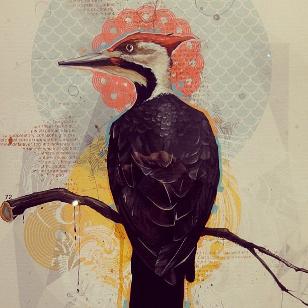 Woodpecker art design painting by Blaine Fontana, Portland Oregon artist at Hellion Gallery by hungryeyeball, via Flickr