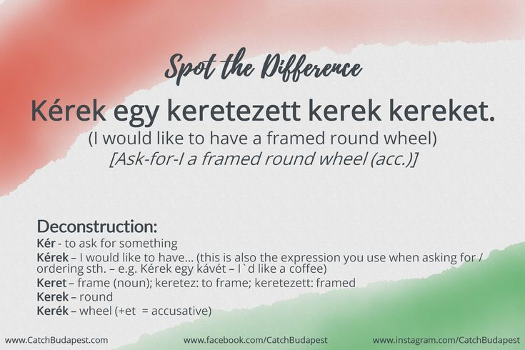 Hungarian can be very special sometimes. We'll help you to Spot the Difference in the Hungarian vocab jungle. #learn #Hungarian #language #CatchBudapest