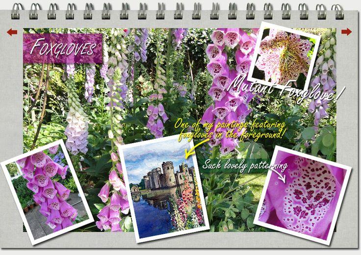 Foxgloves www.kayburton.co.uk/foxgloves.php