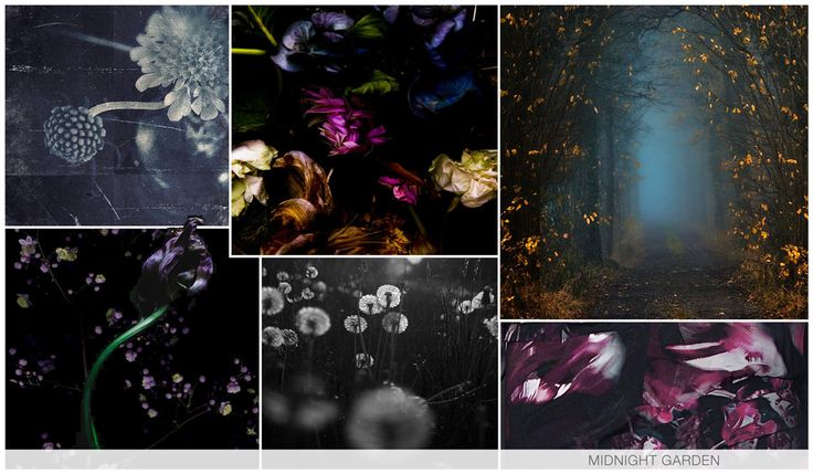 MIDNIGHT GARDEN There is a hidden romance as we walk through a mystical and dark garden. Florals and fauna are subsequently relevant and there is a haunted sensibility, which is represented through painterly petals as well as grayscale photoreals.
