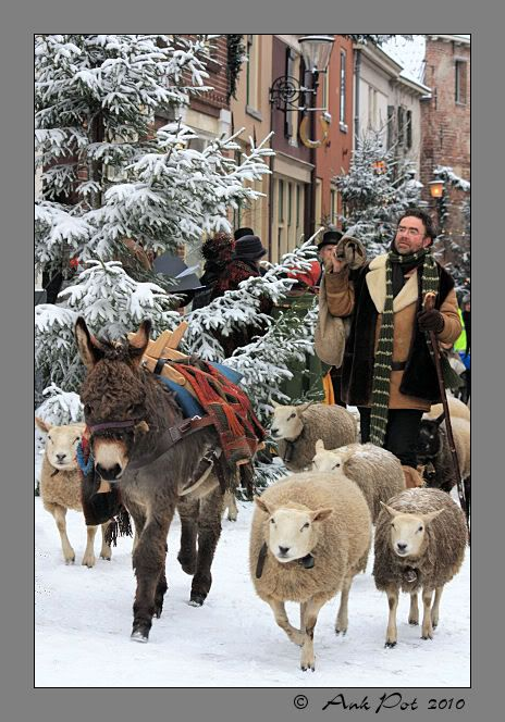 Shepherd at Dickens festival , Deventer, the Netherlands