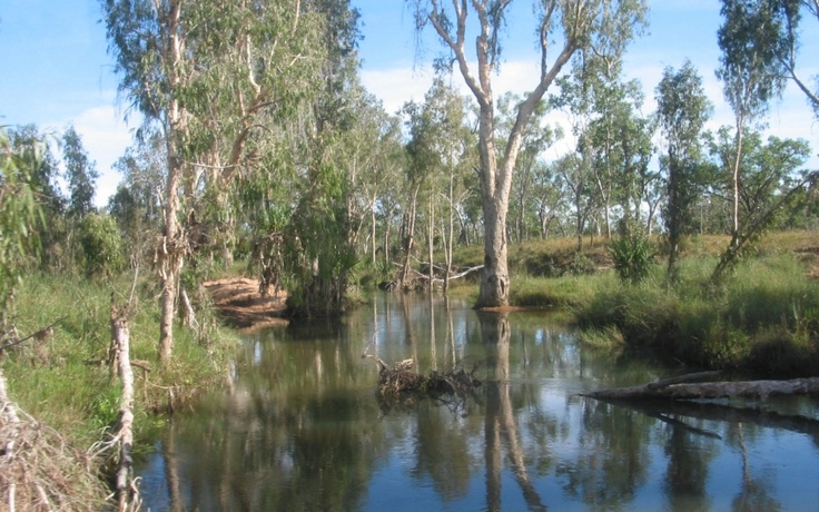 I like rivers and streams. This one was in the wilderness in the Kimberleys, out of reach of estuarine crocodiles.