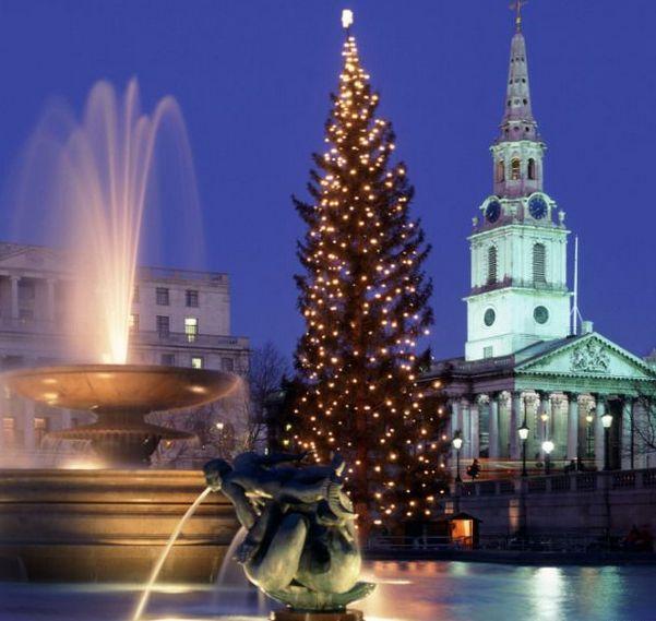 L'albero di Natale a #Trafalgar Square di #Londra http://blog-it.hotelsclick.com/2014/11/alberi-di-natale-origini-e-tradizioni.html