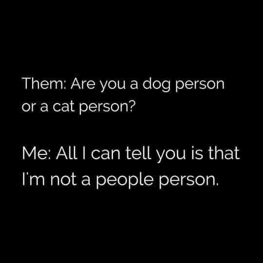 EXACTLY!! But, also, I'm a dog person.