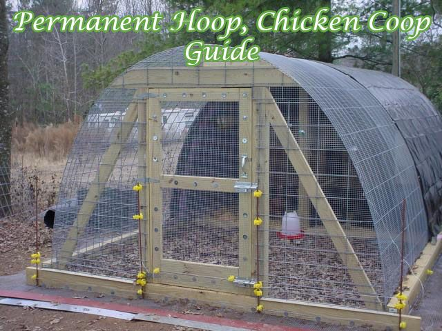 Permanent Hoop, Chicken Coop Guide I love a great chicken coop plan and this is one of the best plans i have seen very sturdy coop and simple to build, great to keep any animals that come along to try and eat your chicken, click on the link belwo to