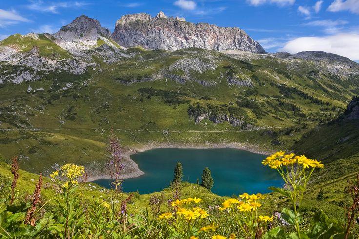 Der Formarinsee und die Rote Wand im Klostertal in Vorarlberg - Urlaub mit Hund #urlaubmithund #hund #hunde #alpen #wandern #wandernmithund #bludenz #vorarlberg #gebirgssee #bergsee #klostertal #rotewand #formarinsee #wanderung #austria #oesterreich #urlaubinoesterreich #bergwiese #gebirge #berge #urlaub #ferien #ferienmithund #hiking #hikingwithdogs