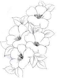 riscos de flores para pintura em tecido - Pesquisa Google