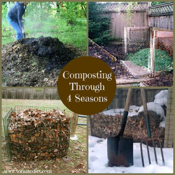 44 Best Images About Compost For Tomatoes On Pinterest 400 x 300
