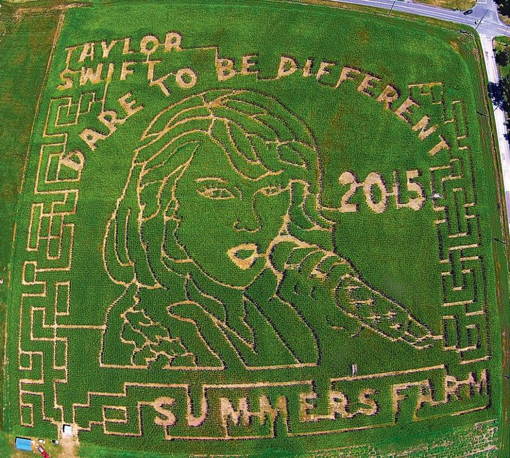 Summers Farm corn maze last year was of Taylor Swift. Photo courtesy of Summers Farm.