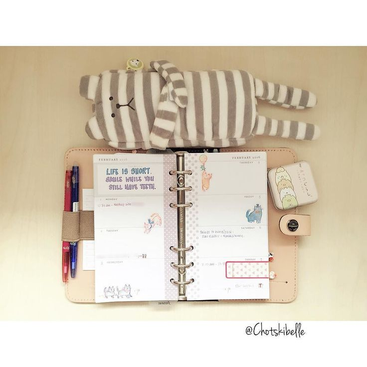 Next week's motivational quote :: Life is short. Smile while you still have teeth. #filofax #planner #craftholic #sumikkogurashi #websterscolorcrush #inserts by chotskibelle