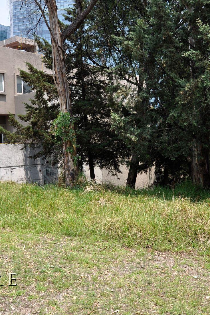 TERRENO HACIENDA SANTA FE en Venta  UNICO Y ULTIMO TERRENO PLANO 1,050 M2. DENTRO DE HACIENDA SANTA FE. USD 2,600 X M2. Esta es tu oportunidad de construir tu casa en el mejor desarrollo de Mexico DF. Más información en www.livemore.com.mx