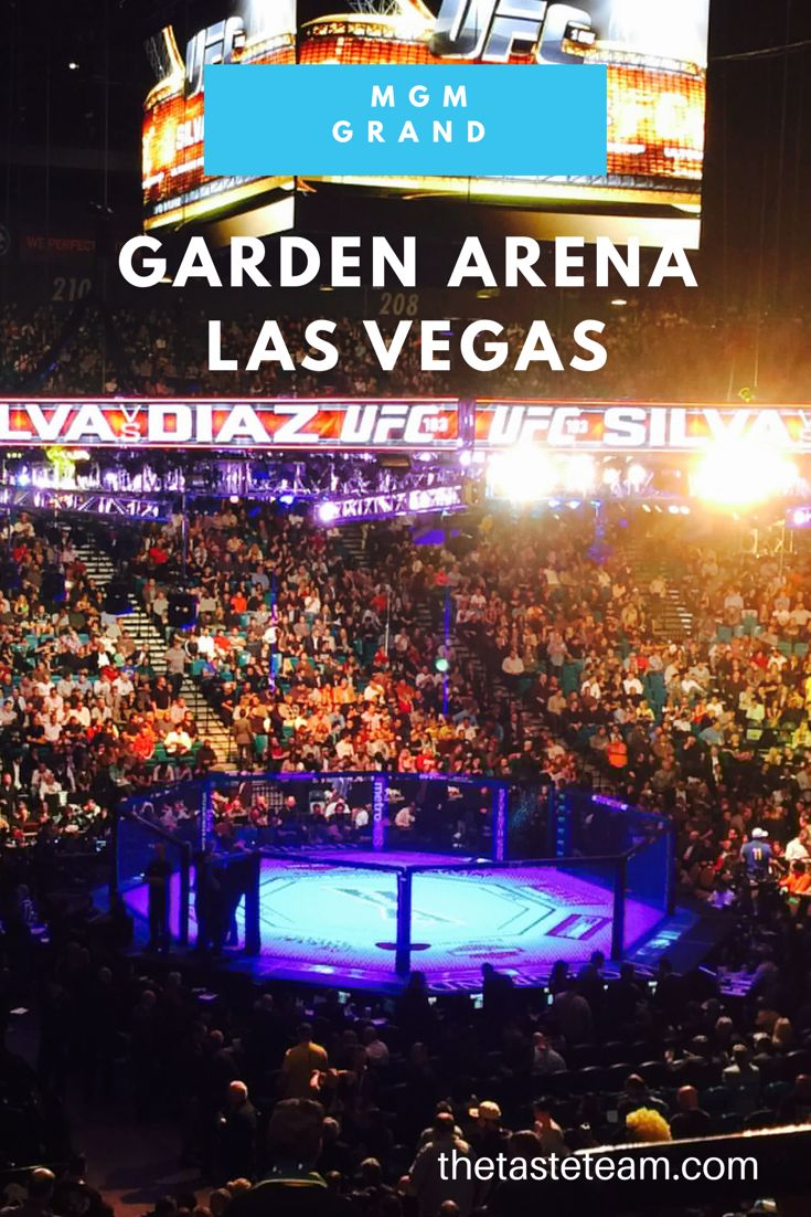 MGM Grand Garden Arena hosts concerts, shows, and sporting events. They're known for holding UFC fights. See what it's like inside their events.