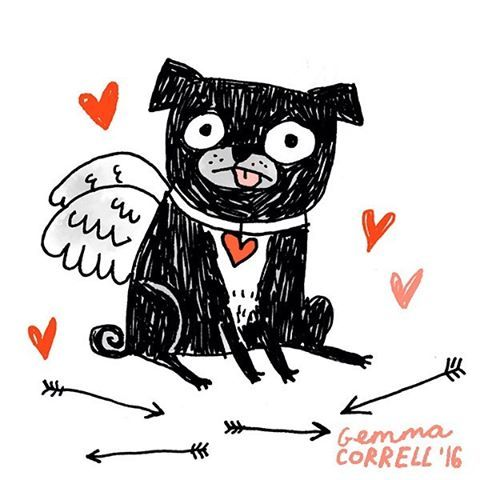 My Puggy Valentine  Next weekend I'm going to be in LA for several events including a Pugentines Pawty in Long Beach - watch this space!  #pugstagram