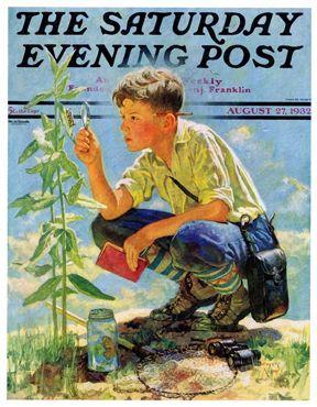 Boy Botanist by Eugene Iverd, Aug. 27,1932, The Saturday Evening Post.
