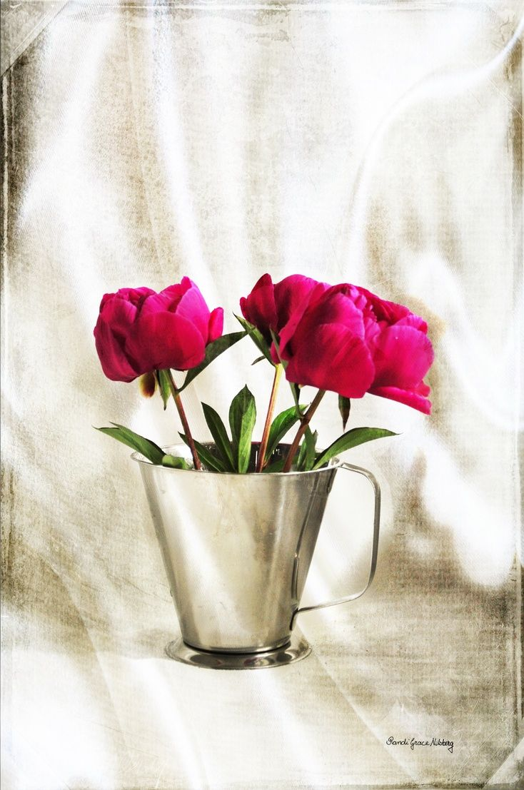 ARTFINDER: Peonies by Randi Grace Nilsberg - Peonies, photo with textures.