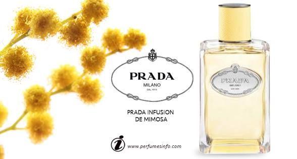 Prada Infusion de Mimosa New Fragrance_جديد بيت أزياء برادا عطر إنفيوجِن دي ميموزا