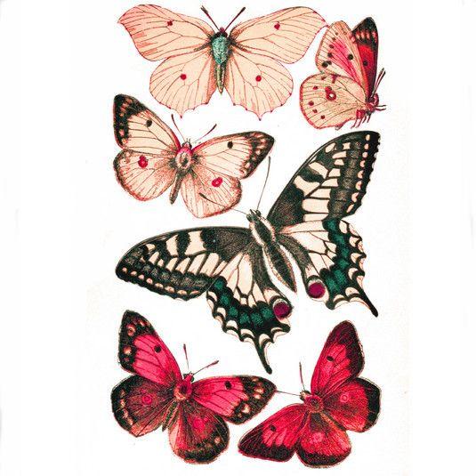 Printable Butterflies in Four Color Schemes | AllFreePaperCrafts.com