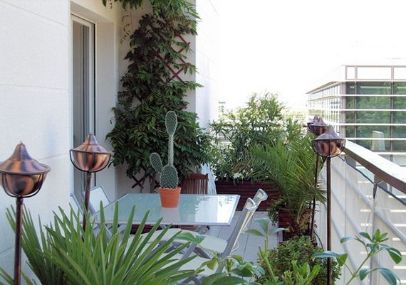 Small Balcony: love the use of plants, especially the climbing vine!