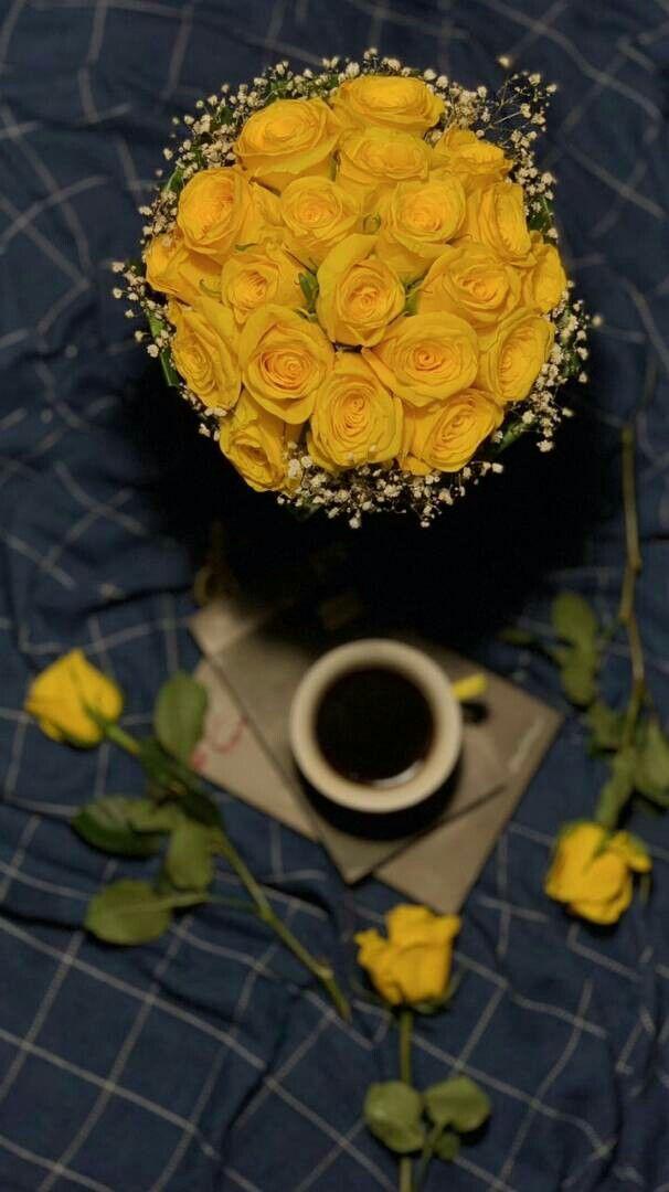 أينما وجد الورد الاصفر وجد الجمال Bff Pictures Polaroid Photography Cover Photo Quotes