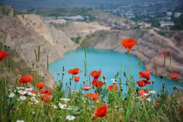 самые красивые места Крыма с маками