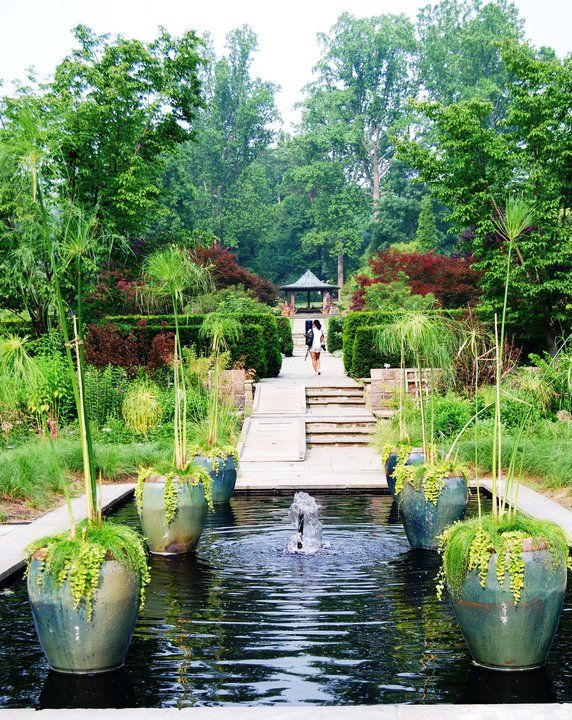A Day At Brookside Gardens