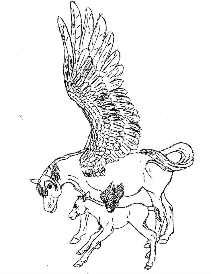 Pegasus With His Son